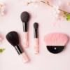 7 Recommended Kyoto Cosmetics Stores - Used by Maiko 💄